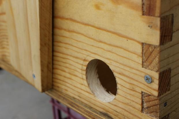 Bait hive 4