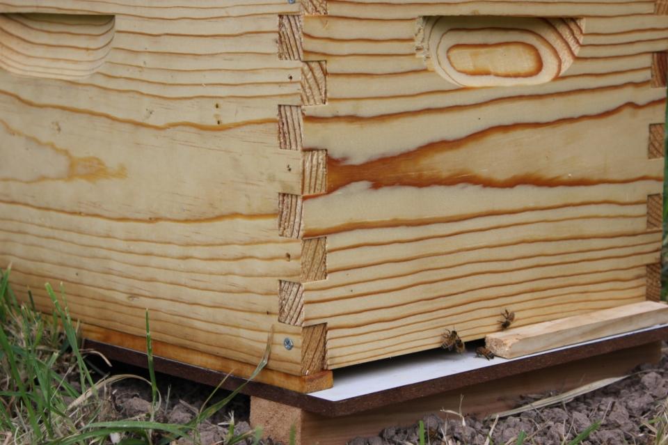 Humpy Creek Bee Hive