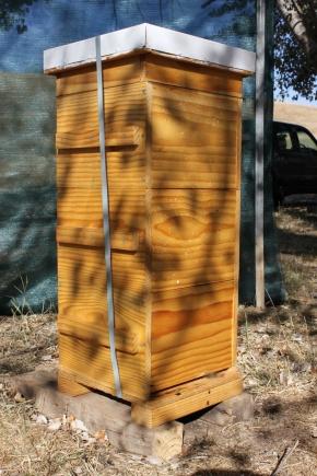 Beehive heat wave preparation