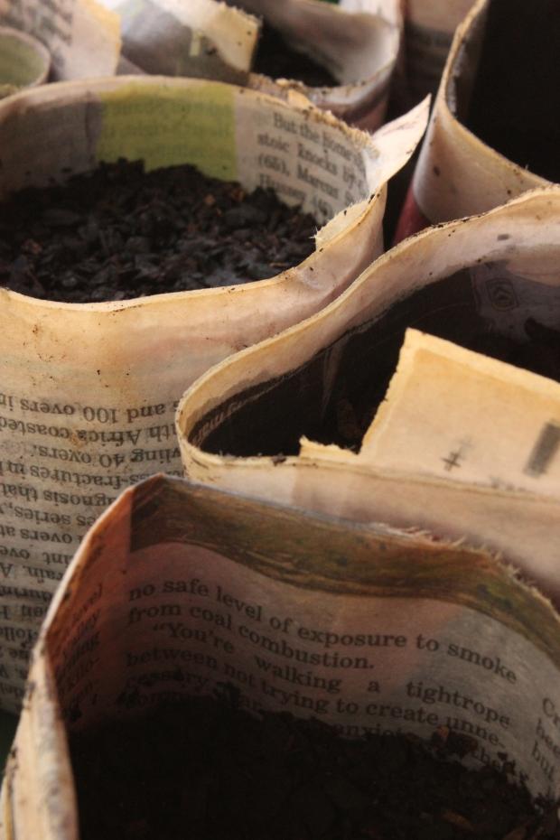 Newspaper seedling pot 1