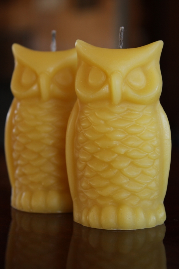 Owl candles vertical