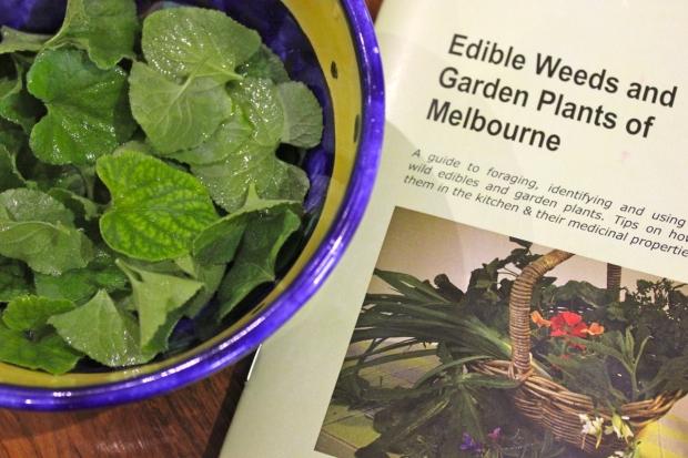 Edible Weeds book